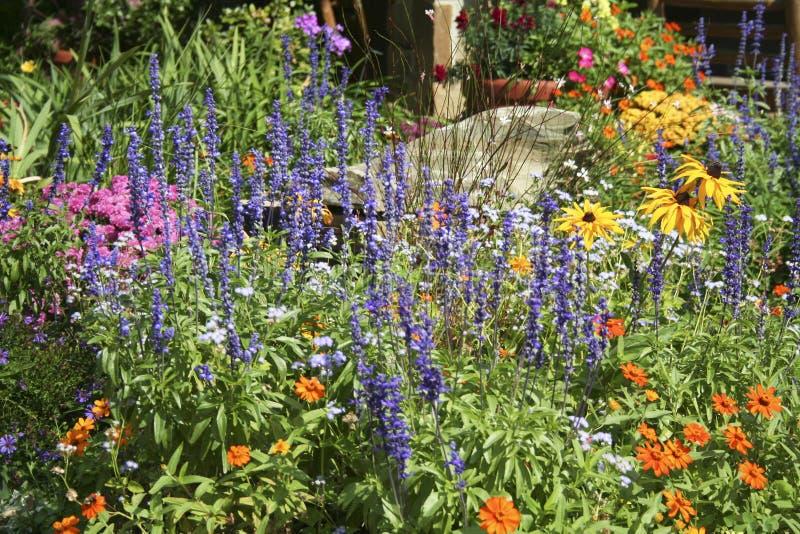 Jardim de flor fotografia de stock
