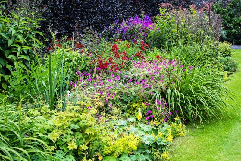 Jardim de flor bonito foto de stock