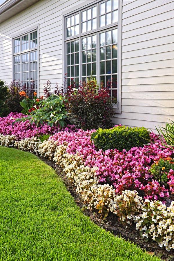 Jardim de flor colorido foto de stock royalty free