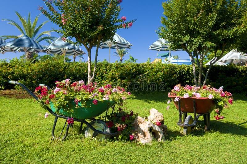 Jardim de flor com carros imagens de stock royalty free