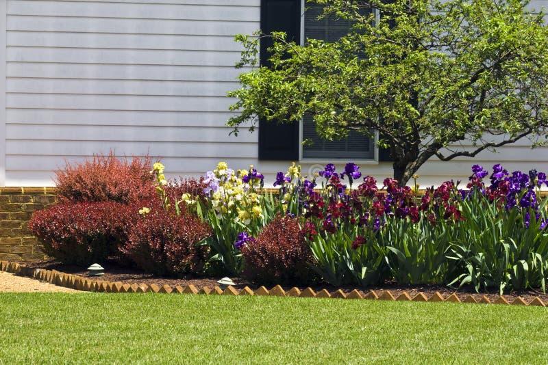 Jardim de flor residencial imagem de stock royalty free