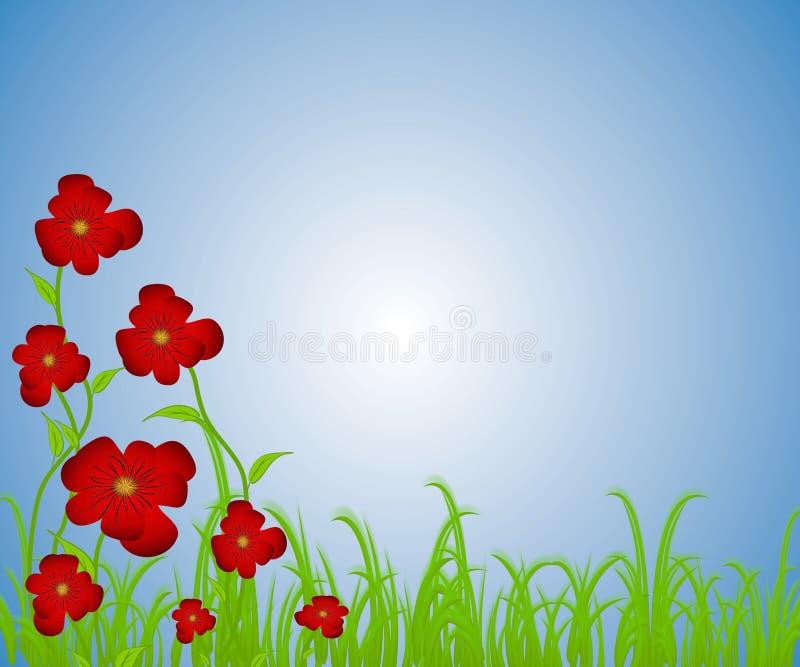 Jardim de flor vermelho das papoilas ilustração royalty free