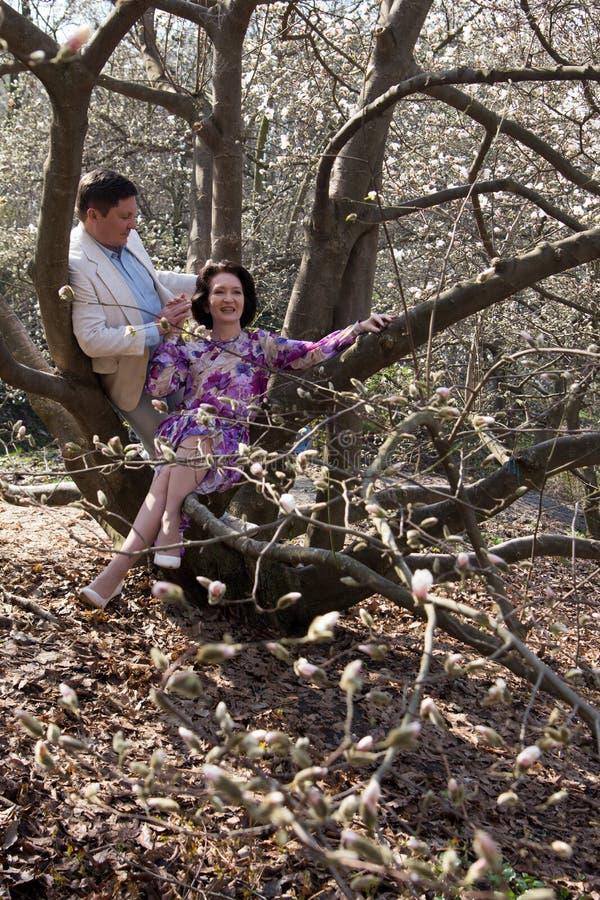 Jardim de florescência da magnólia dos pares idosos da mola da caminhada do casamento imagem de stock royalty free