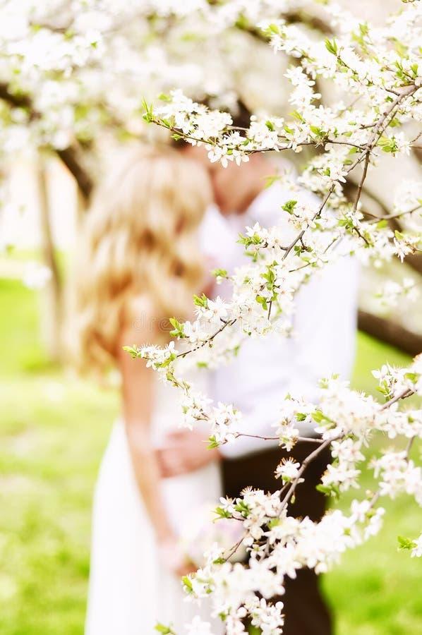 Jardim de florescência da mola e esboços borrados de uma menina em um vestido de casamento e de um indivíduo Foco macio seletivo fotos de stock