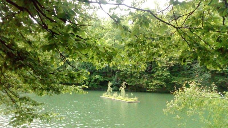 Jardim de flutuação no terceiro lago imagens de stock