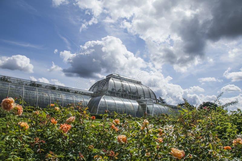 Jardim de Kew, a estufa, rosas e céus imagem de stock royalty free
