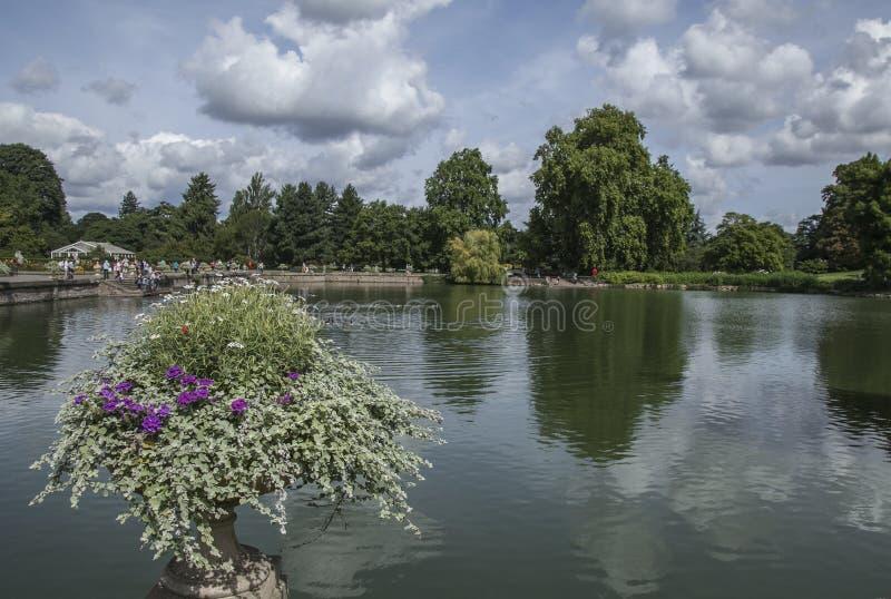 Jardim de Kew, a lagoa e as árvores foto de stock royalty free