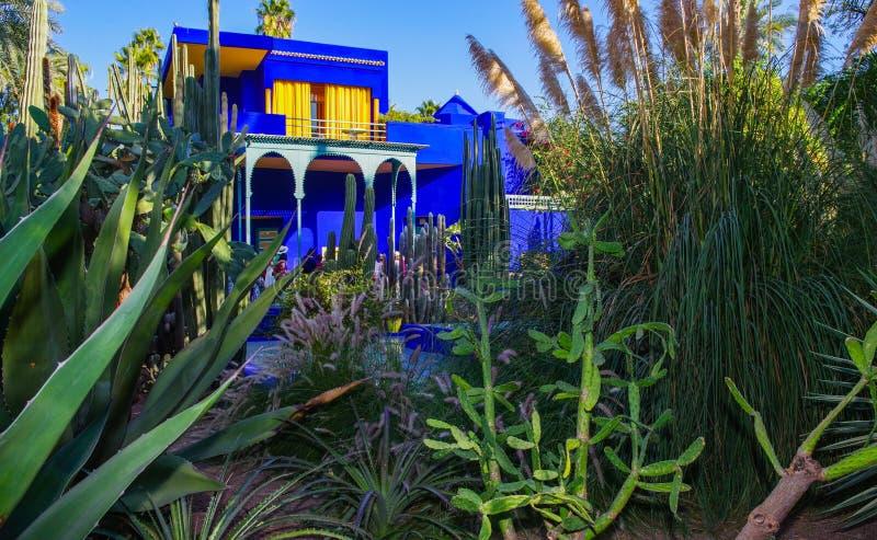 Jardim de Majorelle em C4marraquexe imagem de stock royalty free