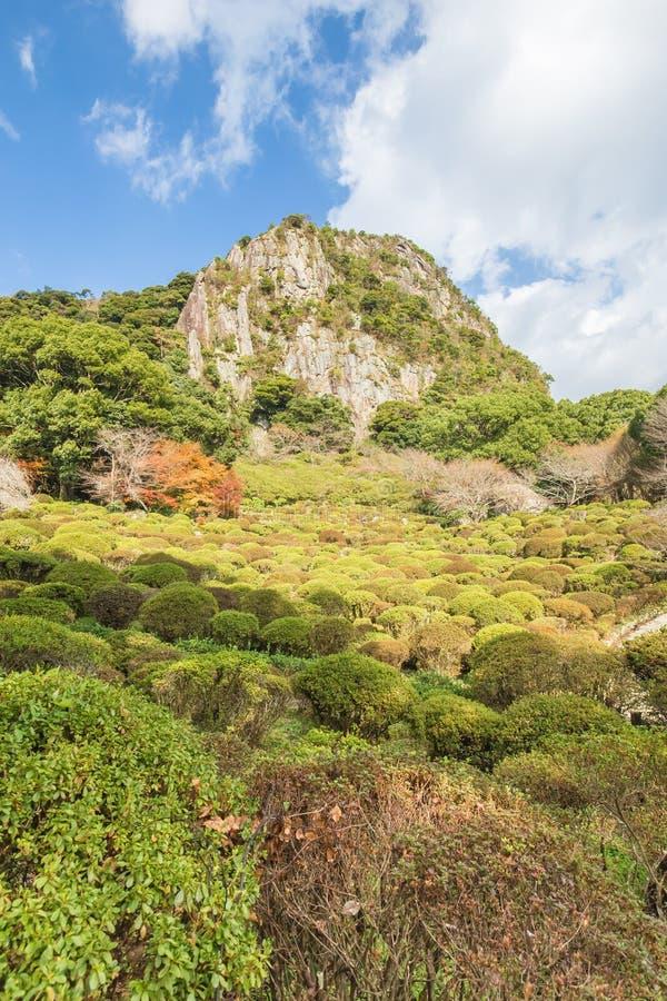Jardim de Mifuneyama Rakuen na saga, Kyushu do norte, Japão foto de stock royalty free