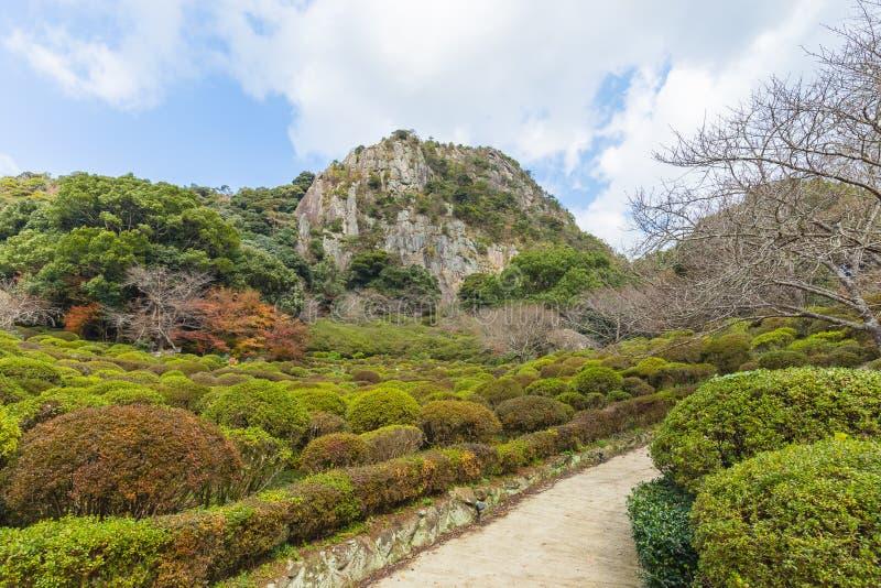 Jardim de Mifuneyama Rakuen na saga, Kyushu do norte, Japão fotografia de stock