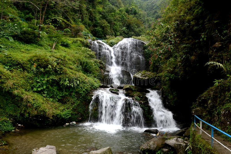 Jardim de rocha, Darjeeling fotos de stock royalty free