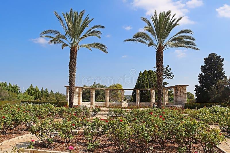 Jardim de rosas, palmas e pulso de disparo do sol, parque Ramat Hanadiv, Israel imagens de stock