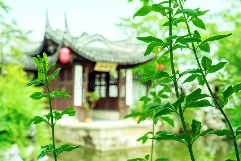 Jardim de Suzhou, China imagem de stock