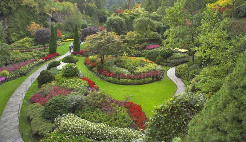 Jardim delicioso. fotografia de stock