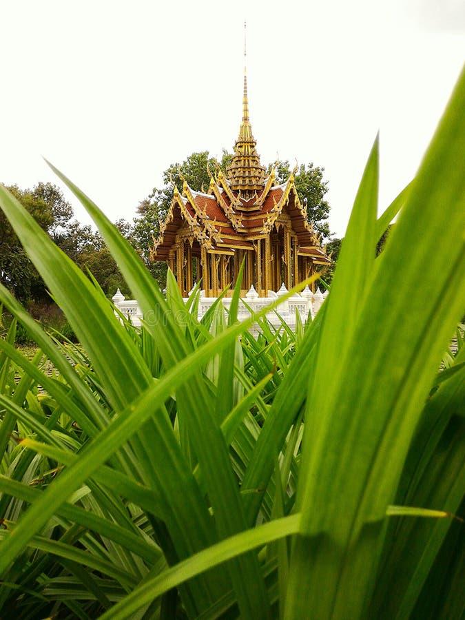 Jardim dentro do templo tailandês imagem de stock