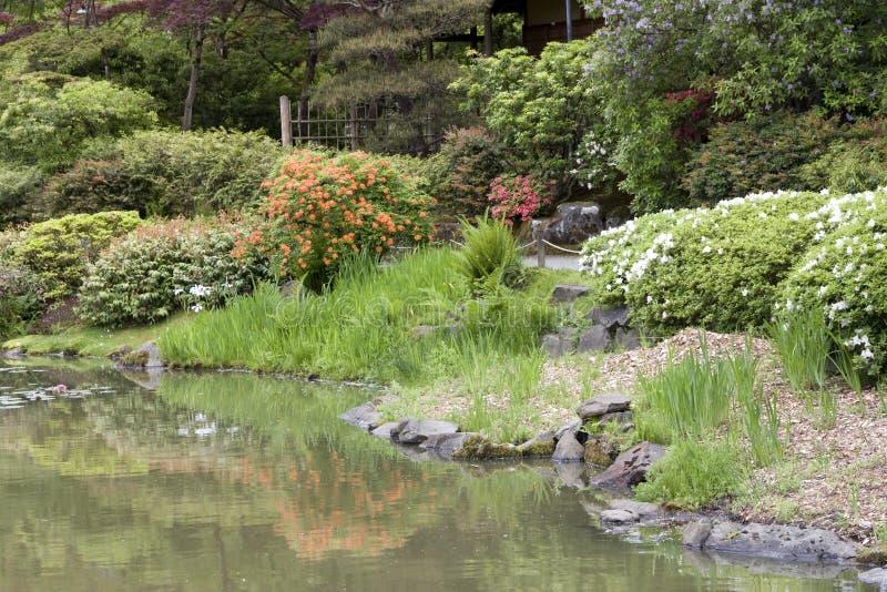 Jardim do japonês de Seattle imagens de stock