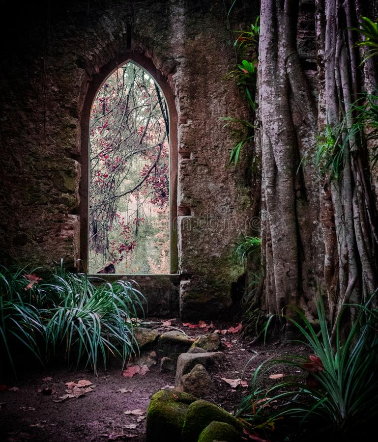 Jardim do palácio de Monserrate com ruínas e videiras cobertos de vegetação e plantas das árvores fotos de stock