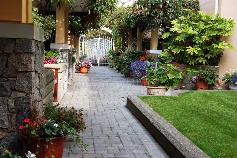 Jardim do verão fotos de stock