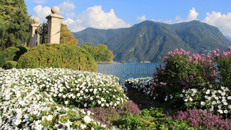 Jardim do verão na beira do lago com Mountain View foto de stock royalty free
