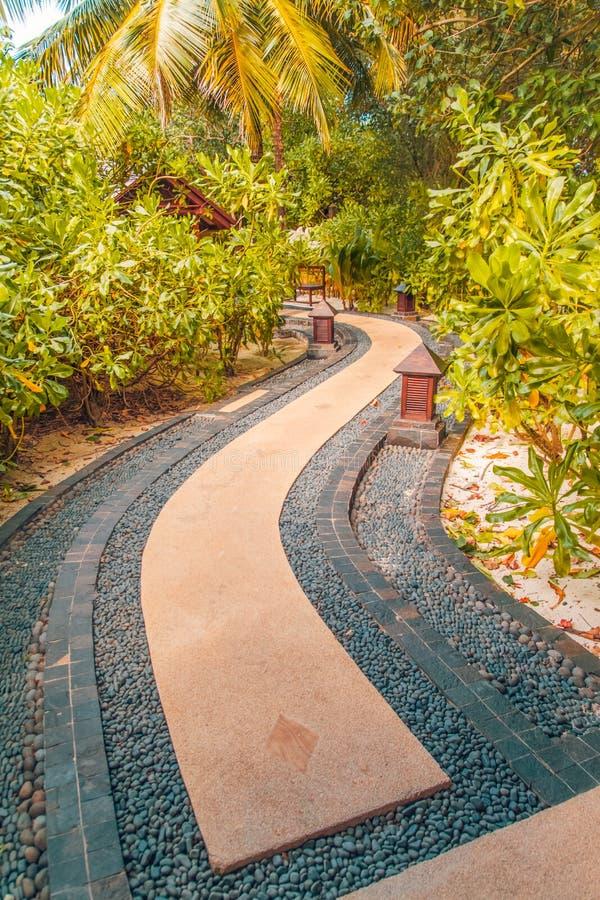 Jardim do zen e palmeiras e caminho japoneses das pedras fotografia de stock