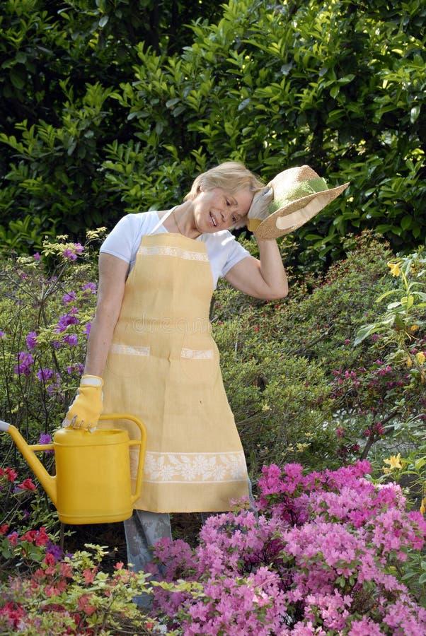 Jardim doce. fotografia de stock royalty free