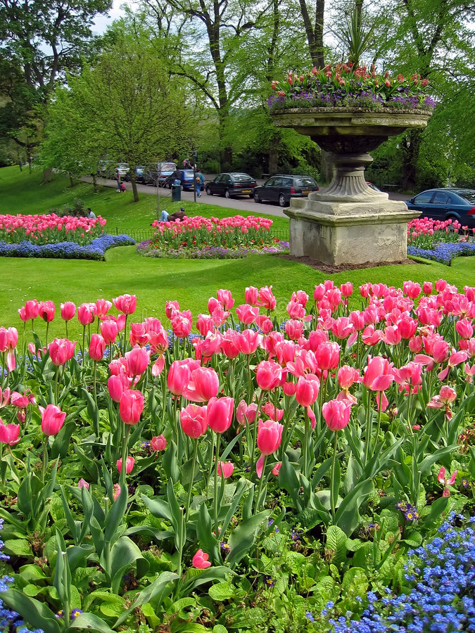 Jardim dos Tulips foto de stock