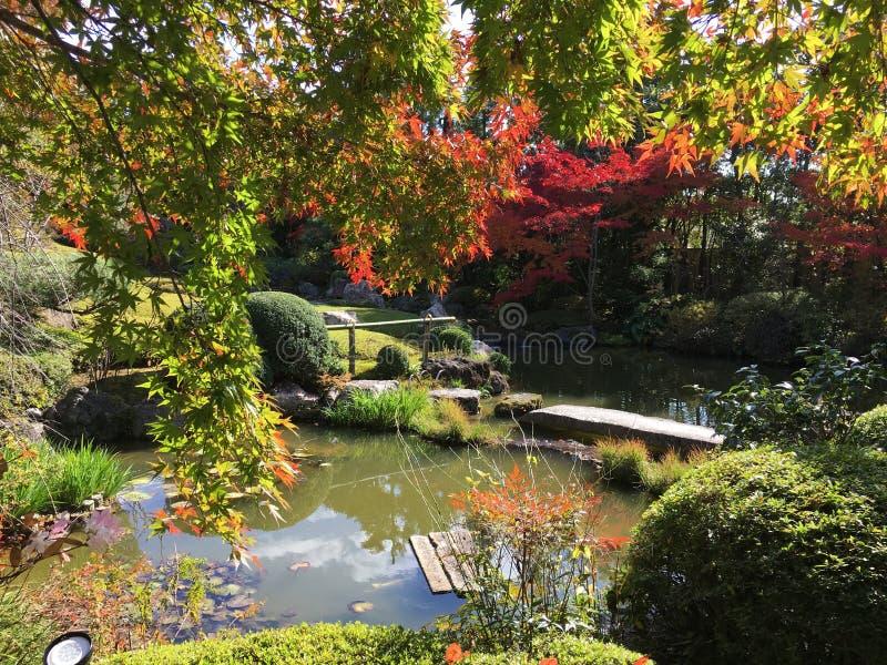Jardim e lagoa japoneses formais fotos de stock