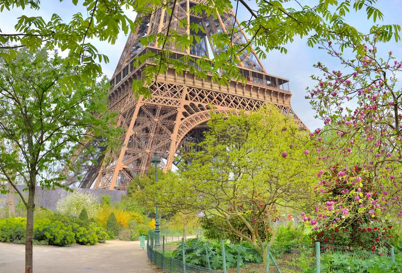 Jardim e parte parisienses do fundo da torre Eiffel fotografia de stock