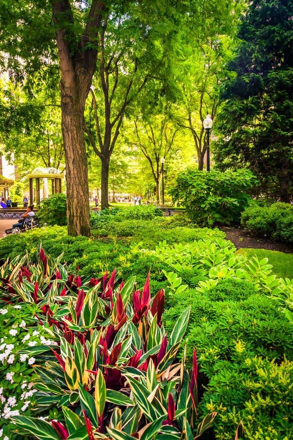 Jardim em B normando Parque de Leventhal em Boston, Massachusetts fotos de stock royalty free