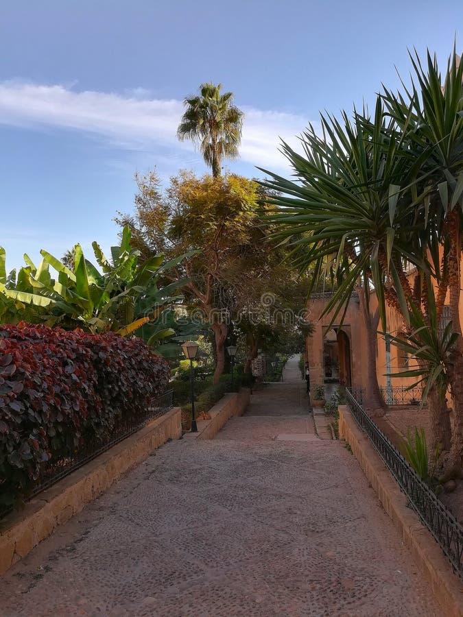 Jardim em Rabat, Marrocos fotos de stock