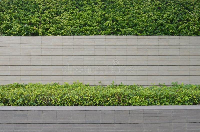 Jardim em uma cerca do tijolo fotografia de stock royalty free