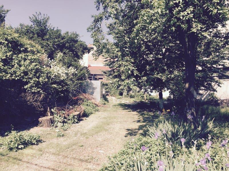 Jardim escondido fotos de stock
