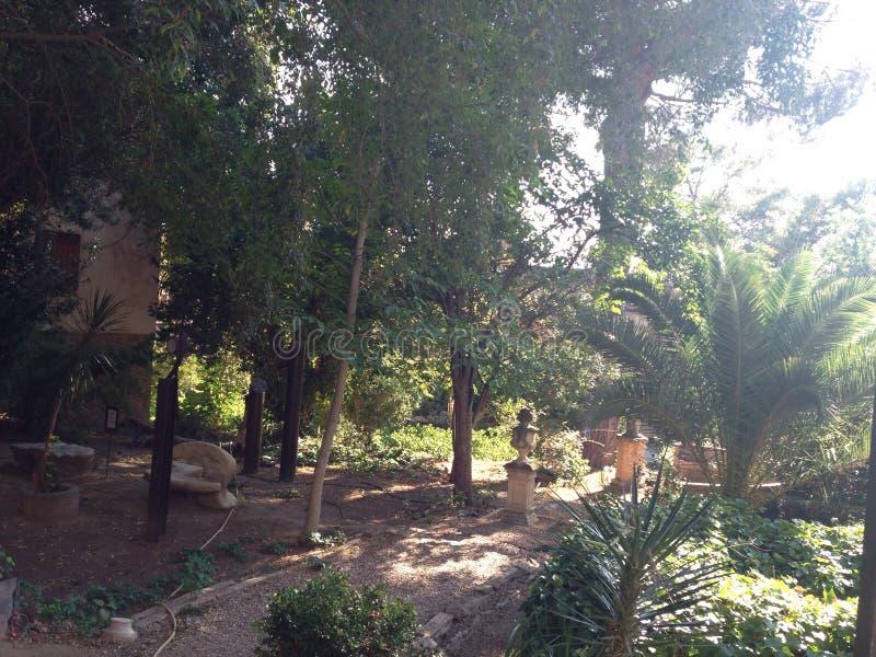 Jardim exótico imagem de stock