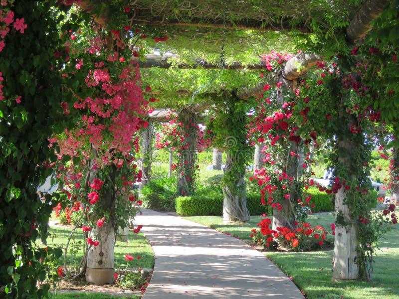 Jardim floral fotos de stock