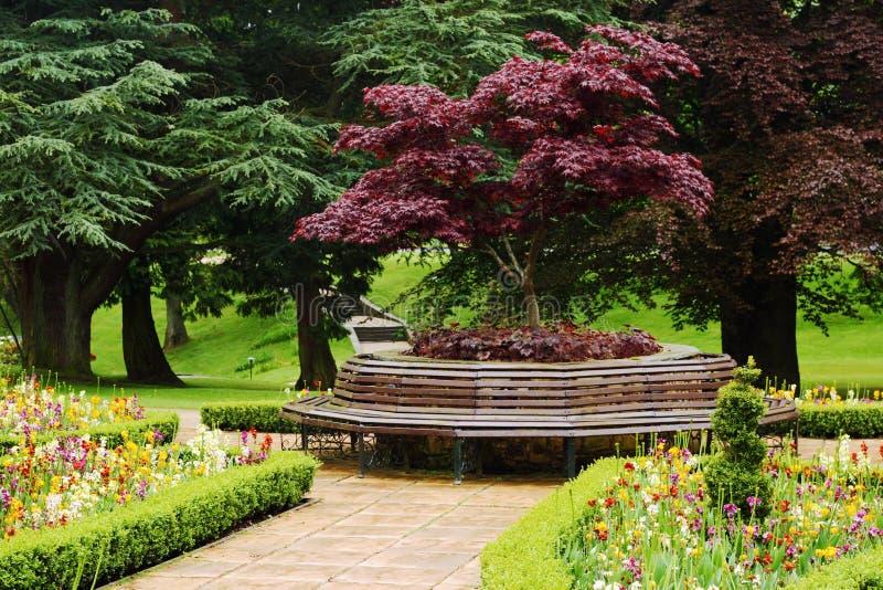 Jardim floral vibrante com banco redondo foto de stock royalty free