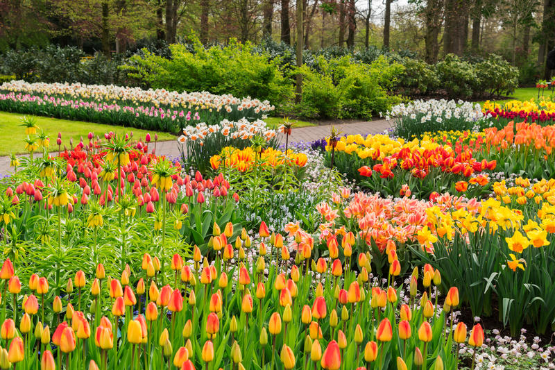 Jardim formal da mola imagem de stock royalty free