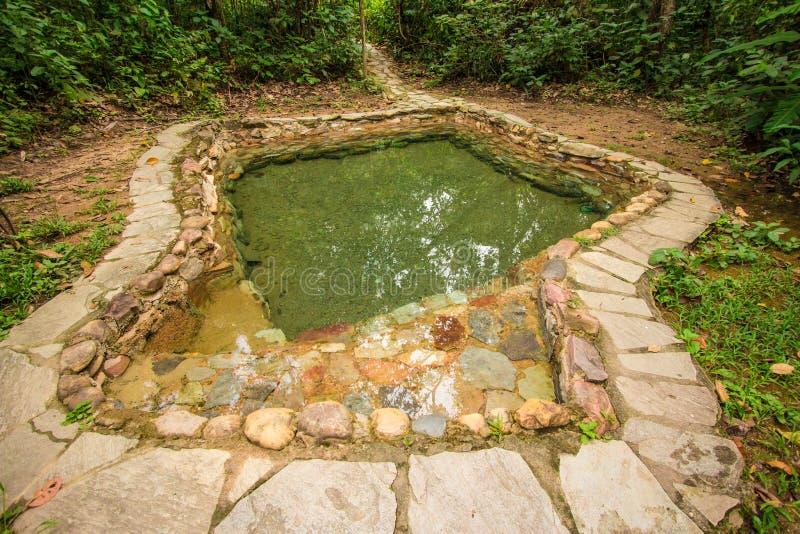 Jardim gör Eden naturligt pölvatten royaltyfri foto