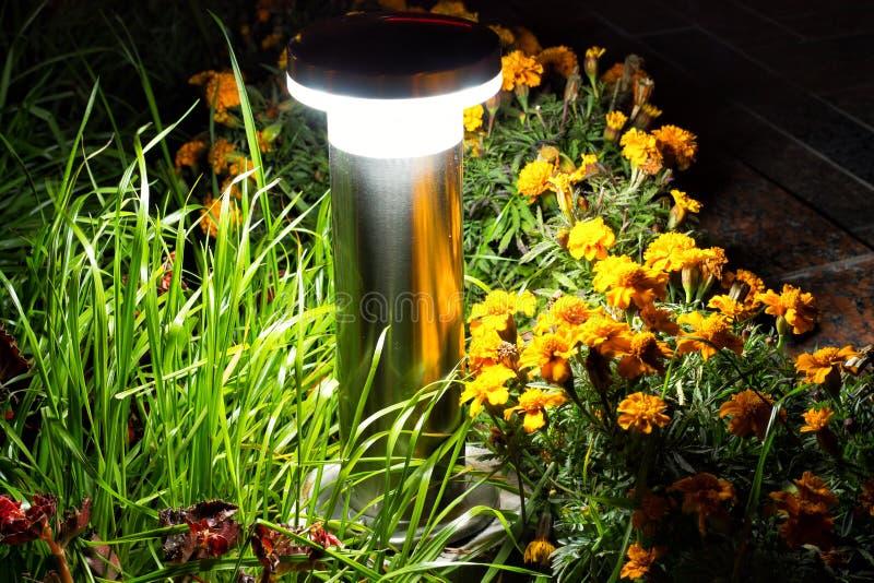 Jardim iluminado pela iluminação do diodo emissor de luz imagens de stock royalty free