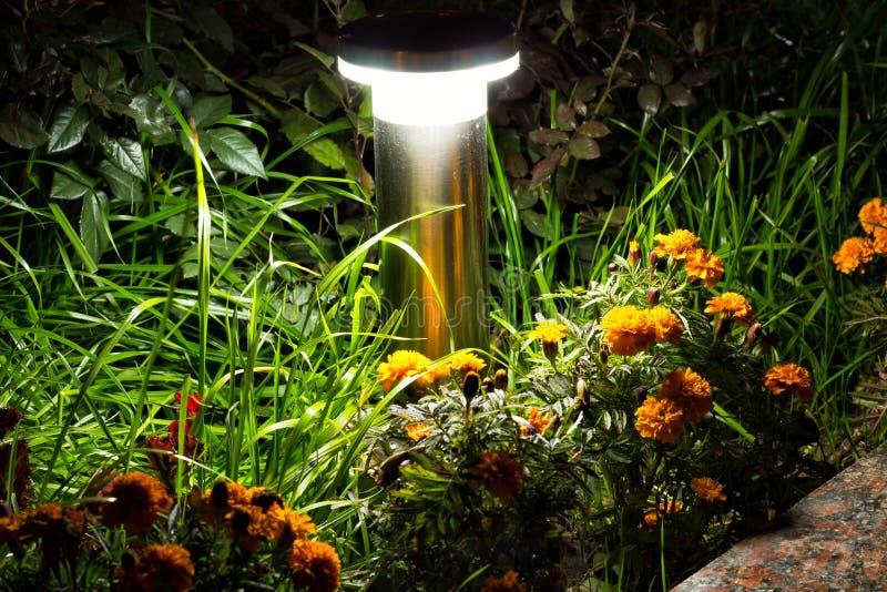 Jardim iluminado pela iluminação do diodo emissor de luz fotografia de stock royalty free