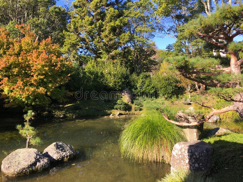 Jardim indiano de Bagh do carvão animal em Hamilton Gardens New Zealand foto de stock royalty free