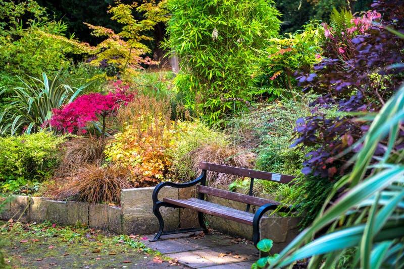Jardim inglês bonito colorido durante o outono fotografia de stock