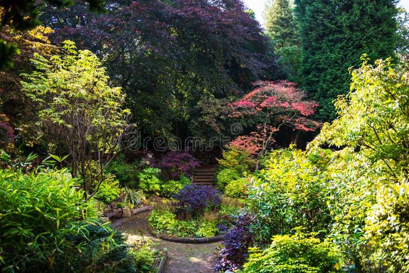 Jardim inglês bonito colorido durante o outono, Inglaterra, U foto de stock