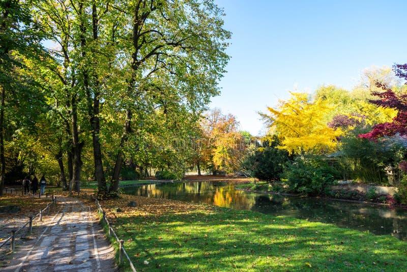 Jardim inglês durante o outono colorido em Munich, Alemanha imagem de stock royalty free