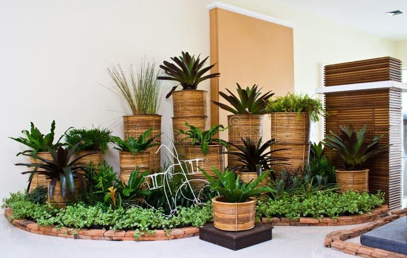 Jardim interno para a decoração do canto do quarto imagem de stock royalty free