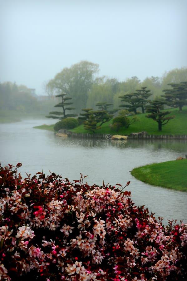 Jardim japonês nevoento imagem de stock royalty free