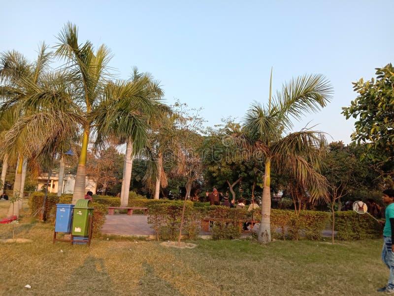 Jardim Limpo na Índia e Kanpur imagem de stock royalty free