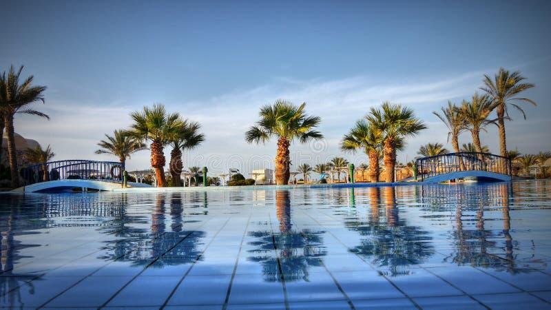 Jardim luxuoso Egito da água azul das palmas fotos de stock royalty free