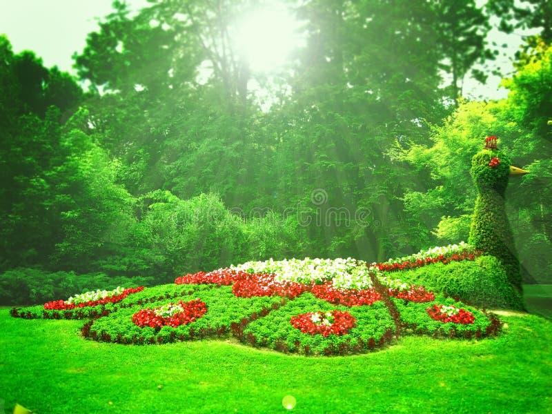 Jardim mágico imagens de stock