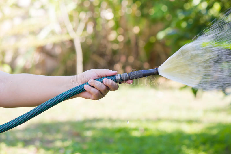 Jardim molhando de trabalho da mangueira imagem de stock royalty free