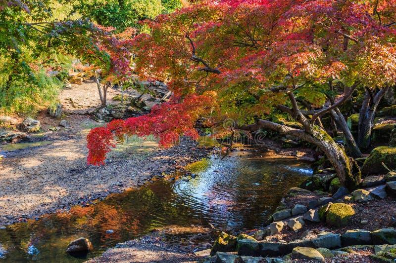 Jardim na frente do templo de Todaiji em Nara fotos de stock